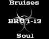 Bruises -Soul-