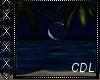 !C*  Moon Beach