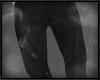 `H Jeans. v2