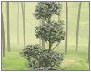 🌱 Topiary Giant