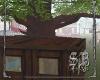 SB Tree Shop