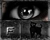 [BC] Memory | Black F