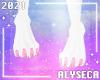 A✦ Lyra paws F