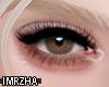 ʀ| Eyes L Brown
