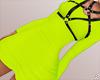 $ Dress + Harness