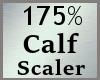 Scale Calf Calve 175% MA