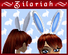 Bunny Ears *BlueWhite