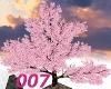 007 Sakura  tree
