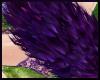 Furry Purple Tail