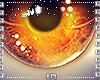 [LD] Halloween Eyes