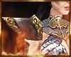 Queen's Armor Should 2