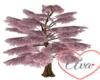 Lit up Cherry Tree