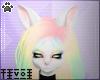 Tiv| Rin Ears (M/F) V3