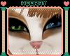 [H!] 2T Mocha uni eyes