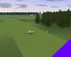 Grass Runway