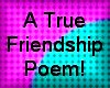 A True Friendship Poem