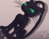 Witch  Black Cat Pet