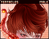 ☕ Latte | Hair M 1
