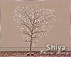 ❤ Love Tree
