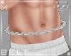 Belt Silver M5b Ⓚ
