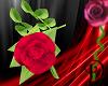 [D] Pink Handheld Rose