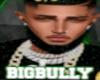 SON BIGBULLY