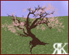 [K] Sakura Tree