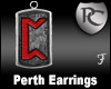 Perth Rune Earrings