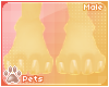[Pets] Luci | paws