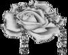 Silver Flowers-L