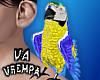va. shoulder parrot M