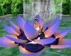 Lotus Lamp Meditation