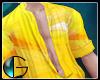 IGI Fashion Shirt v.4