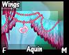 Aquin Wings