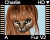 Charlie Fur A v2