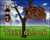 Tree Climb Brown