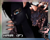 (IR)Knight Hound: Hair F
