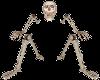 WB Skeleton Border