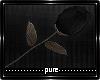 Dead Rose (Hand)
