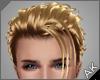 ~AK~ Leo: Golden Blonde