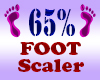Resizer 65% Foot