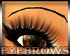 High Eyebrows