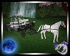 Sakura Horse & Carriage