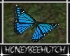 Farm Blue Butterfly C.