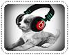 Rocking Puppy ^^
