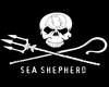 Sea Shepherd Flag Pole