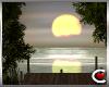 Secret Sunset Lake