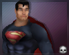 [T69Q] Superman Animated