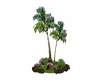 Coconut tree 220