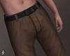 $ Fall Pants